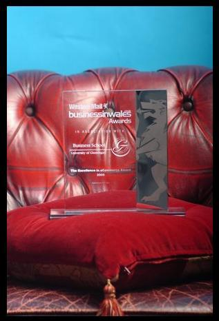 2008 excellence in e-commerce : The award